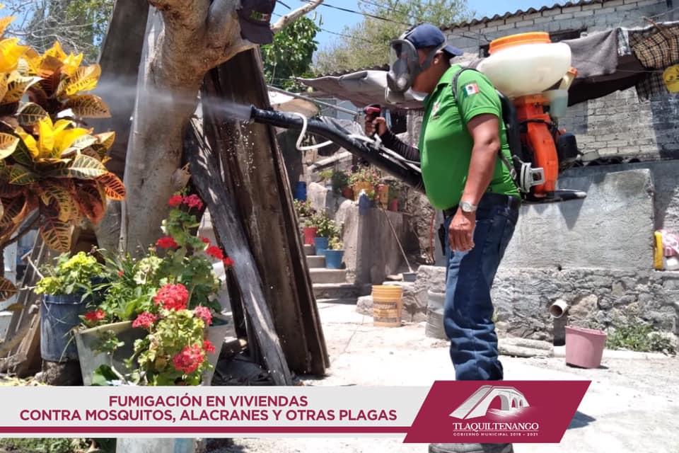 Jornada de Fumigaciones de Viviendas contra plagas e Insectos en Tlaquiltenango
